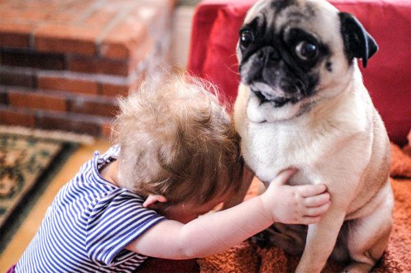 Empatia no UX Design - Criança abraçando um pug
